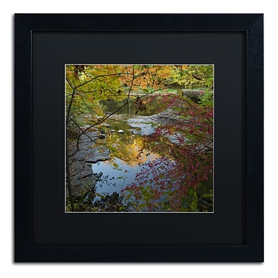 Trademark Fine Art Kurt Shaffer Why I Love Autumn 3 16 x 16 (886511704343)
