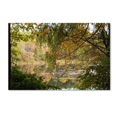 Trademark Fine Art Kurt Shaffer Window to Early Autumn 22 x 32 (KS01060-C2232GG)