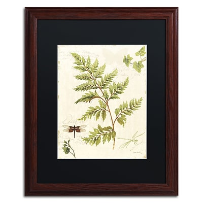Trademark Fine Art Lisa Audit Ivies and Ferns I 16 x 20 (886511709836)