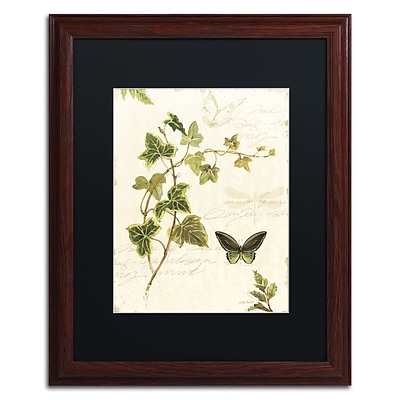 Trademark Fine Art Lisa Audit Ivies and Ferns IV 16 x 20 (886511710139)
