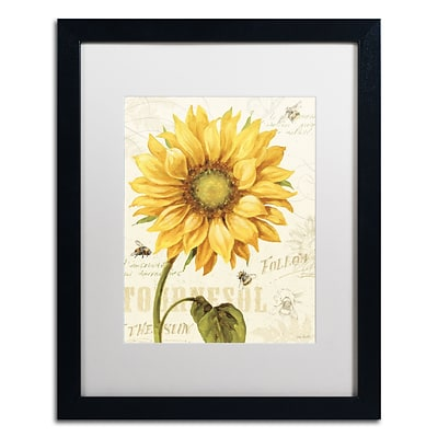 Trademark Fine Art Lisa Audit Under the Sun I 16 x 20 (WAP0221-B1620MF)