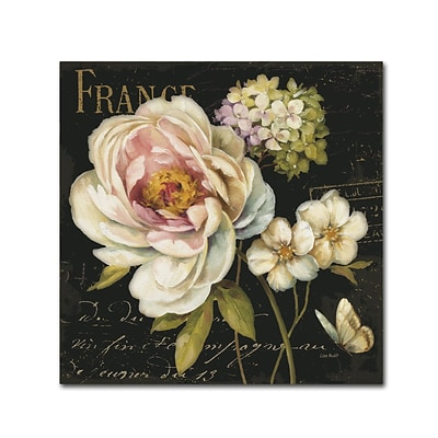 Trademark Fine Art Lisa Audit Marche de Fleurs on Black 14 x 14 (WAP0228-C1414GG)