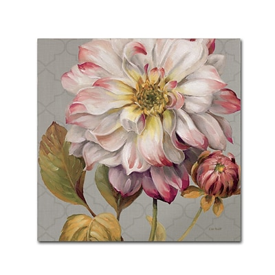 Trademark Fine Art Lisa Audit Classically Beautiful II 18 x 18 (WAP0254-C1818GG)