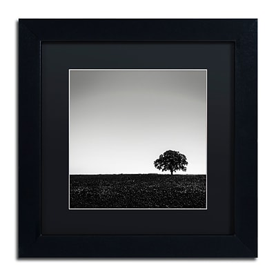 Trademark Fine Art Dave MacVicar One Tree Hill 11 x 11 (886511743243)