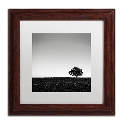 Trademark Fine Art Dave MacVicar One Tree Hill 11 x 11 (ALI0843-W1111MF)