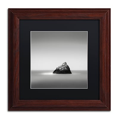 Trademark Fine Art Dave MacVicar Pointed 11 x 11 (886511743724)