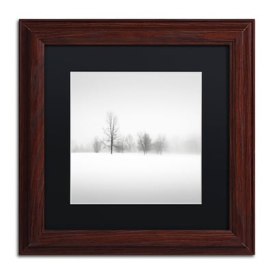 Trademark Fine Art Dave MacVicar Winter Fog 11 x 11 (886511746381)