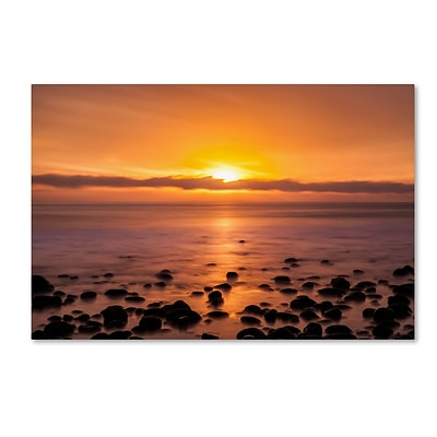 Trademark Fine Art Chris Moyer Pacific Sunset 30 x 47 (ALI0765-C3047GG)