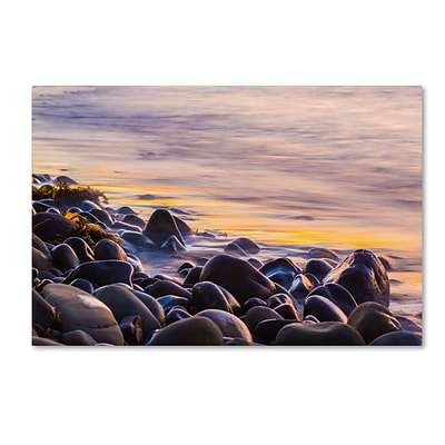 Trademark Fine Art Chris Moyer Wet Rock Reflections 30 x 47 (ALI0767-C3047GG)