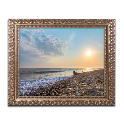 Trademark Global Chris Moyer Rockin Sunset 16 x 20 Ornate Framed Art (ALI0770-G1620F)
