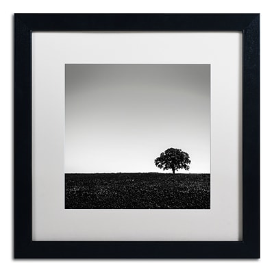 Trademark Fine Art Dave MacVicar One Tree Hill 16 x 16 (ALI0843-B1616MF)