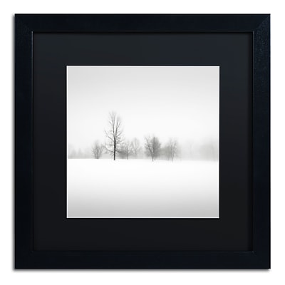 Trademark Fine Art Dave MacVicar Winter Fog 16 x 16 (886511746329)
