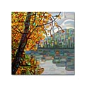 Trademark Fine Art Mandy Budan Reflections 14 x 14 (ALI0930-C1414GG)
