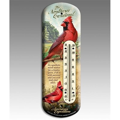 American Expedition Back Porch Thermometer; Cardinal (IDMN622)