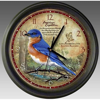 American Expedition Bluebird 16in Round Wall Clock (IDMN717)