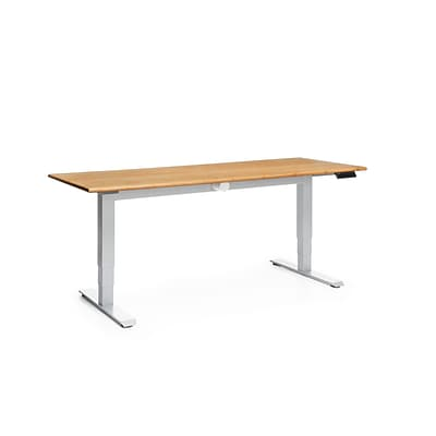 OFM Versa Series 72 Electric Height Adjustable Table, Amber (HAT-3072-PLN-AMB)