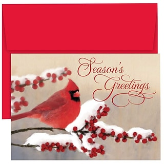 JAM Paper® Christmas Holiday Cards Set, Winter Cardinal, 18/pack (526869000)