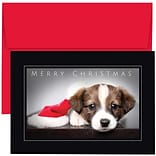 JAM Paper® Christmas Holiday Cards Set, Merry Christmas Puppy, 18/pack (526869500)