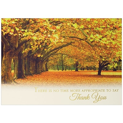JAM Paper® Blank Thanksgiving Card Set, Covered in Thanks, 25/pack (526SI15490WB)