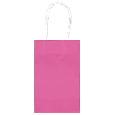 Amscan Cub Bags Value Pack, 4/Pack, Bright Pink (162500.103)