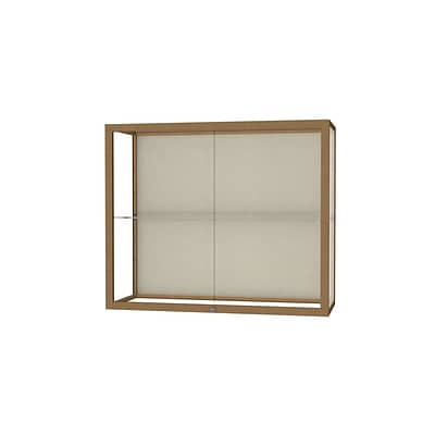 Waddell Champion 36W x 30H x 14D Wall Case, Plaque Back, Champagne Finish