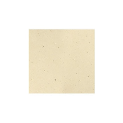 LUX® 12 x 12 Paper; Stone, 50 Sheets (12-P-83-50)