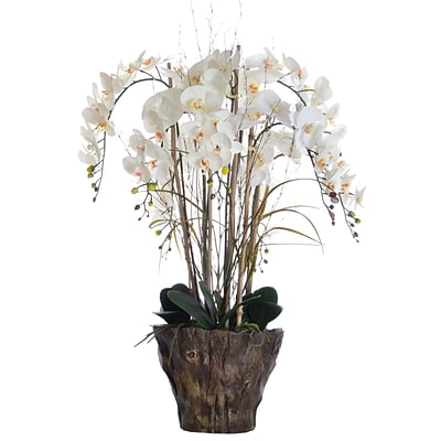 Laura Ashley 38 Tall Orchid Arrangement in Fiberstone Pot 27 x 27 x 38H(VHA102446)