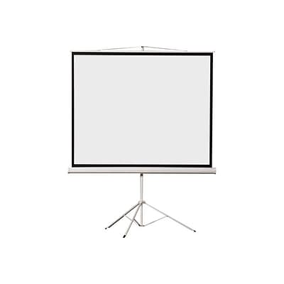 EluneVision 70 by 70  Tripod Projector Screen