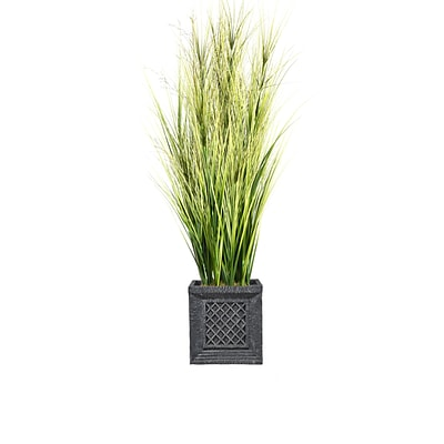 Laura Ashley 66 Tall Onion Grass with Twigs in Planter (VHX114215)