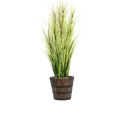 Laura Ashley 68 Tall Onion Grass with Twigs in Planter (VHX114216)