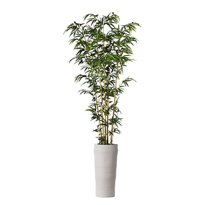 Laura Ashley 93 Bamboo Tree in Natural Poles in Planter (VHX116218)