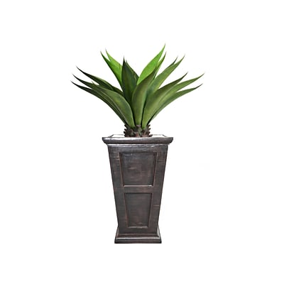 Laura Ashley 51 Tall Giant Aloe in Planter (VHX120201)