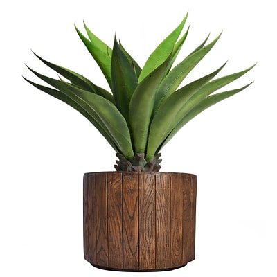 Laura Ashley 37 Tall Giant Aloe in Planter (VHX120202)