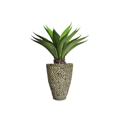 Laura Ashley 46 Tall Giant Aloe in Planter (VHX120209)