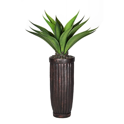 Laura Ashley 53 Tall Giant Aloe in Planter (VHX120214)