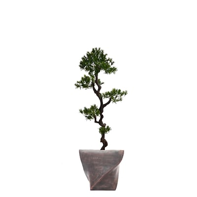 Laura Ashley 58 Tall Yacca Tree in Planter (VHX122203)
