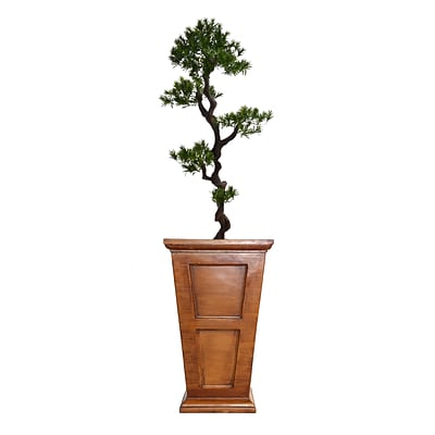 Laura Ashley 67 Tall Yacca Tree in Planter (VHX122210)