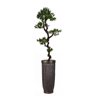 Laura Ashley 69 Tall Yacca Tree in Planter (VHX122214)