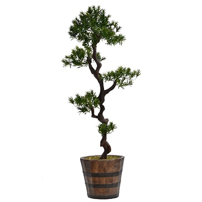 Laura Ashley 56 Tall Yacca Tree in Planter (VHX122216)
