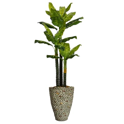 Laura Ashley 86 Tall Real Touch Evergreen in Planter (VHX123209)
