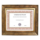 NuDell Executive Series Document And Photo Frame, 8 x 10, Gold Frame (15169)