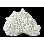 Ceramic Conch Shell Figurine 7x6.25x4 White