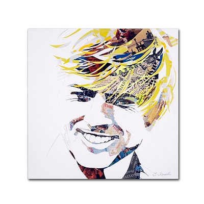 Trademark Fine Art Robert by Ines Kouidis 35 x 35 Canvas Art (ALI0994-C3535GG)
