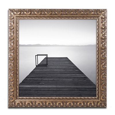 Trademark Fine Art Cube by Moises Levy 16 x 16 Ornate Frame (ALI1061-G1616F)