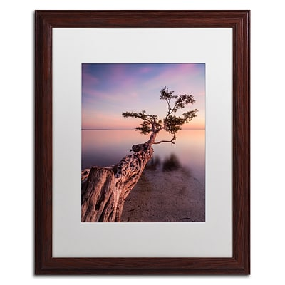 Trademark Fine Art Water Tree IV by Moises Levy 16 x 20 White Matted Wood Frame (ALI1066-W1620MF)