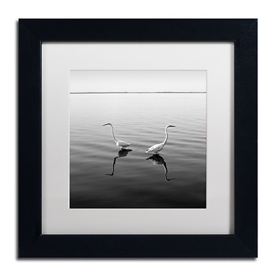 Trademark Fine Art 2 Herons by Moises Levy 11 x 11 White Matted Black Frame (ALI1086-B1111MF)