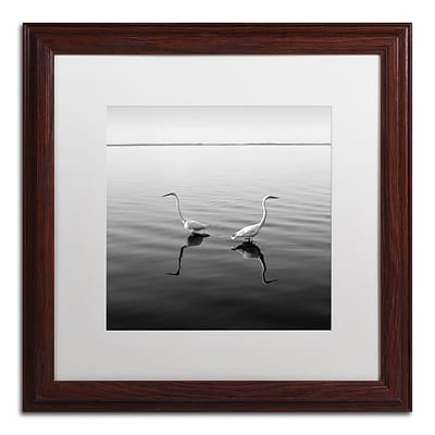 Trademark Fine Art 2 Herons by Moises Levy 16 x 16 White Matted Wood Frame (ALI1086-W1616MF)