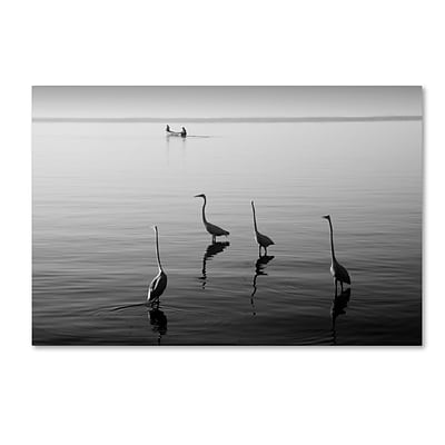 Trademark Fine Art 4 Herons and Boat by Moises Levy 22 x 32 Canvas Art (ALI1088-C2232GG)