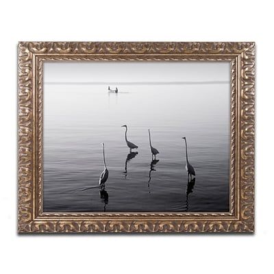 Trademark Fine Art 4 Herons and Boat by Moises Levy 11 x 14 Ornate Frame (ALI1088-G1114F)