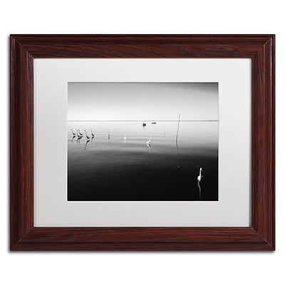 Trademark Fine Art 11 Herons by Moises Levy 11 x 14 White Matted Wood Frame (ALI1090-W1114MF)